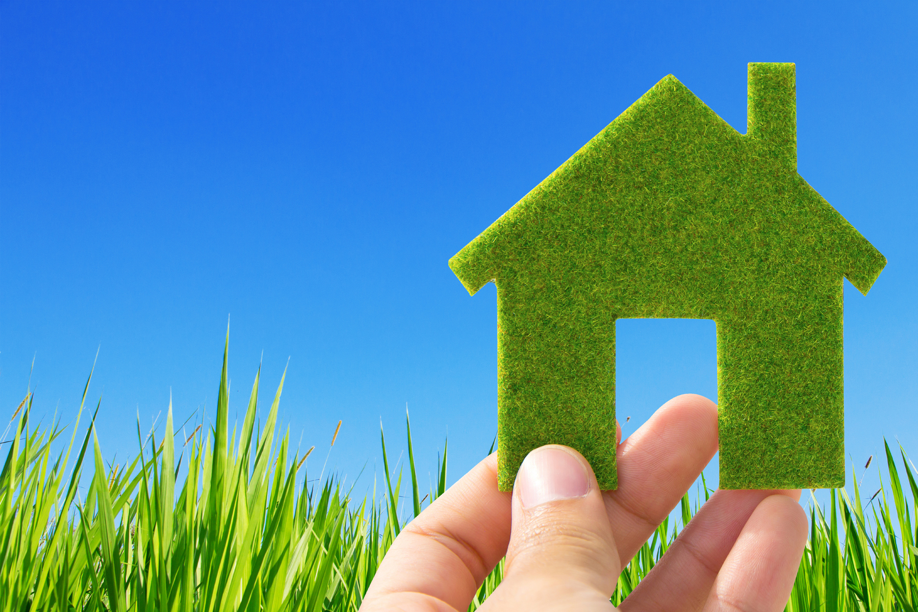 Tips to green your home